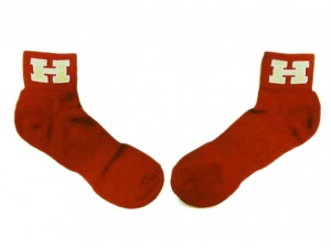 Custom Socks with Logo