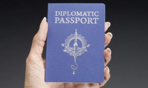 Custom Novelty Passports